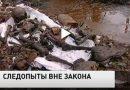 Российские поисковые отряды могут оказаться вне закона